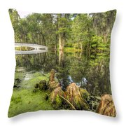 Magnolia Plantation Cypress Garden Throw Pillow