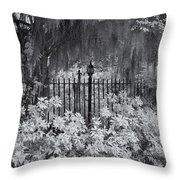 Magnolia Plantation Lightpost Throw Pillow