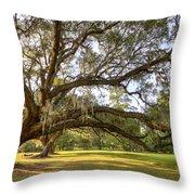 Magnolia Plantation Live Oak Sunrise Throw Pillow