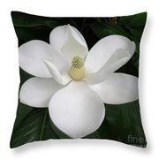 Magnolia Splendor Throw Pillow