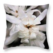 Magnolia Square Throw Pillow
