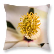 Magnolia Study Throw Pillow