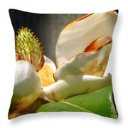 Magnolia Sunburn Throw Pillow