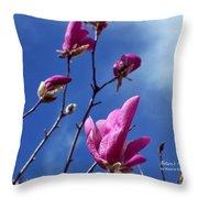 Magnolia Tulip Tree Throw Pillow