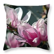 Magnolias Are Blooming Throw Pillow