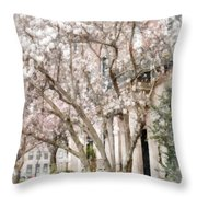 Magnolias In Back Bay Throw Pillow