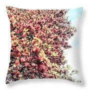 Magnolias In Bloom Throw Pillow