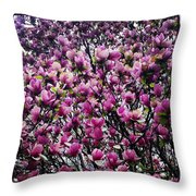 Magnolias In Spring Throw Pillow