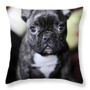 Magoo II Throw Pillow