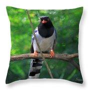 Magpie I Throw Pillow