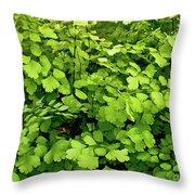 Maidenhair Fern Throw Pillow