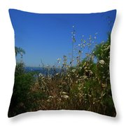 Maidenhair Ferns And Grasses On The Bluff Throw Pillow