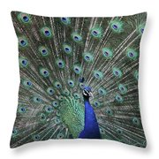 Main Attraction #2 Throw Pillow