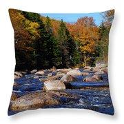Maine 53 Throw Pillow