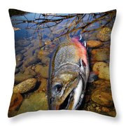 Maine Brookie Throw Pillow