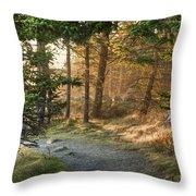 Maine Forest At Dusk Throw Pillow