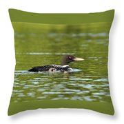 Maine Loon 5 Throw Pillow