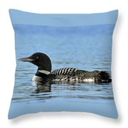 Maine Loon Throw Pillow