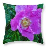Maine Rose Throw Pillow