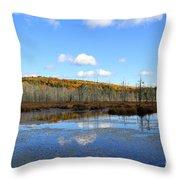 Maine's Beauty Throw Pillow