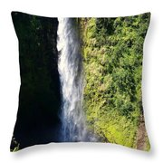 Majestic Akaka Falls Throw Pillow