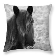 Majestic Beauty Bw Throw Pillow