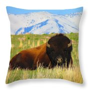 Majestic Buffalo  Throw Pillow