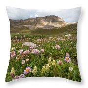 Majestic Colorado Alpine Meadow Throw Pillow