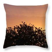 Majestic Dawn Throw Pillow