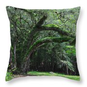 Majestic Fern Covered Oak Throw Pillow