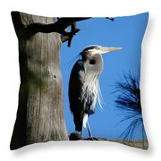 Majestic Great Blue Heron Throw Pillow