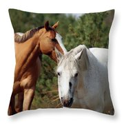 Majestic Horse Ride Throw Pillow