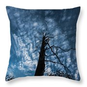 Majestic Nature On Beauty In Death Throw Pillow