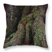 Majestic Tree Trunk Throw Pillow