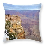 Majestic View Throw Pillow