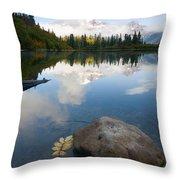 Majesty Hidden Throw Pillow