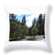 Majesty Squared Throw Pillow