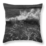Make A Splash Throw Pillow by Evelina Kremsdorf