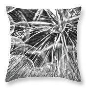 Make A Wish B / W Throw Pillow