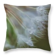 Make A Wish Throw Pillow by Beth Sawickie