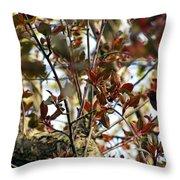 Make An Eternal Spring Throw Pillow