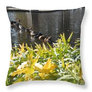All My Ducks In A Row Throw Pillow