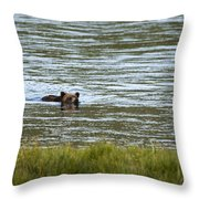 Make Way Throw Pillow