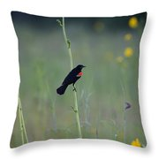 Making His Way To The Top Throw Pillow