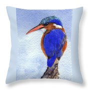 Malachite Kingfisher Throw Pillow