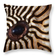Malaysia Pufferish Eye Throw Pillow