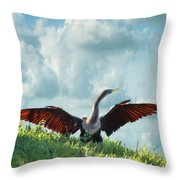 Male American Anhinga  Throw Pillow
