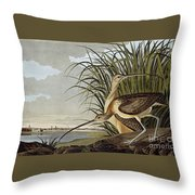 Male And Female Long Billed Curlew Throw Pillow