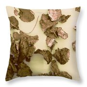 Male Dandruff Particles Throw Pillow