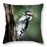 Male Downy Throw Pillow